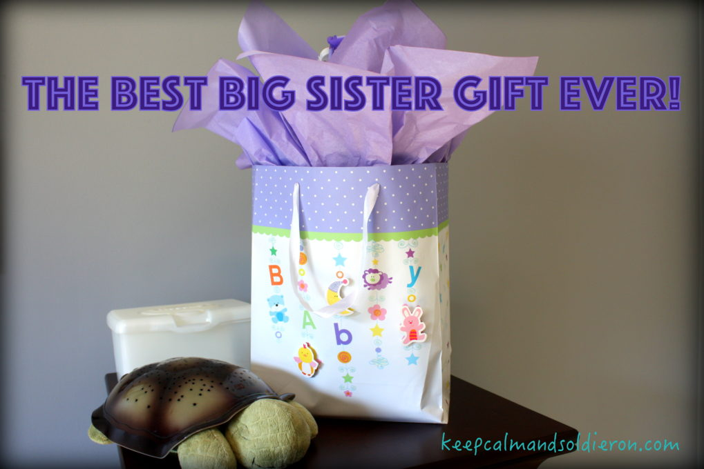 The Best Big Sister Gift Ever